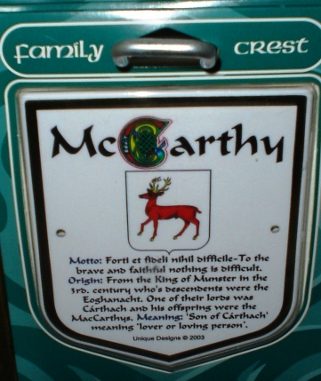 While there, she saw my McCarthy family crest, so she took a picture of it.